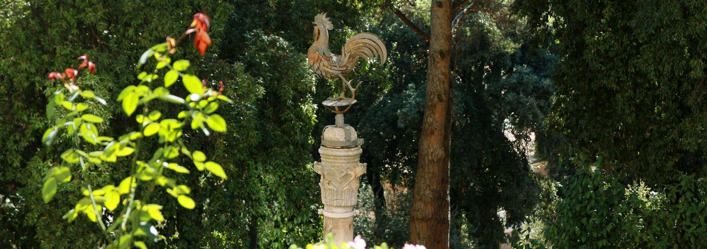 Il gallo simbolo del Seminario
